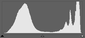 In this histogram you can see that there's been no loss of detail in either the lights or shadows. So the picture you see before you has technically correct exposure.