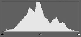 "This histogram looks like a beautiful mountain range; it's evenly distributed from 0 to 255. This is the classical ""ideal histogram."""