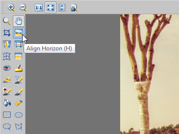 Activate the Align Horizon tool (H).