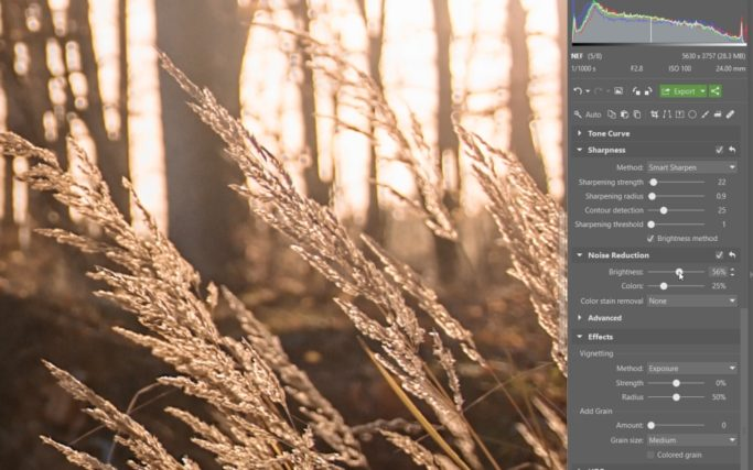 How to Edit RAW: noise reduction.