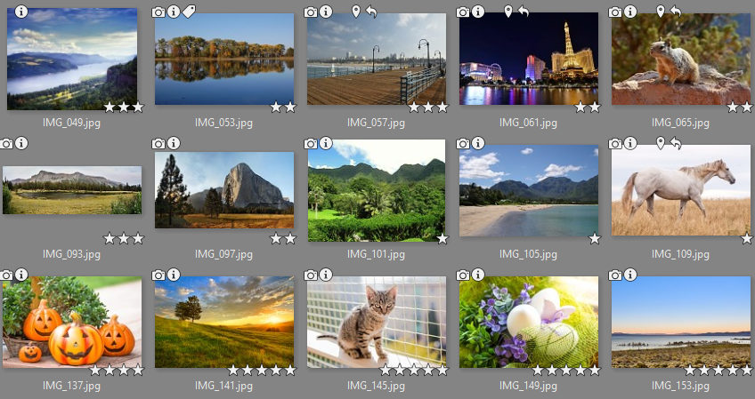 The ratings and labels you assign are shown in pictures' thumbnails.