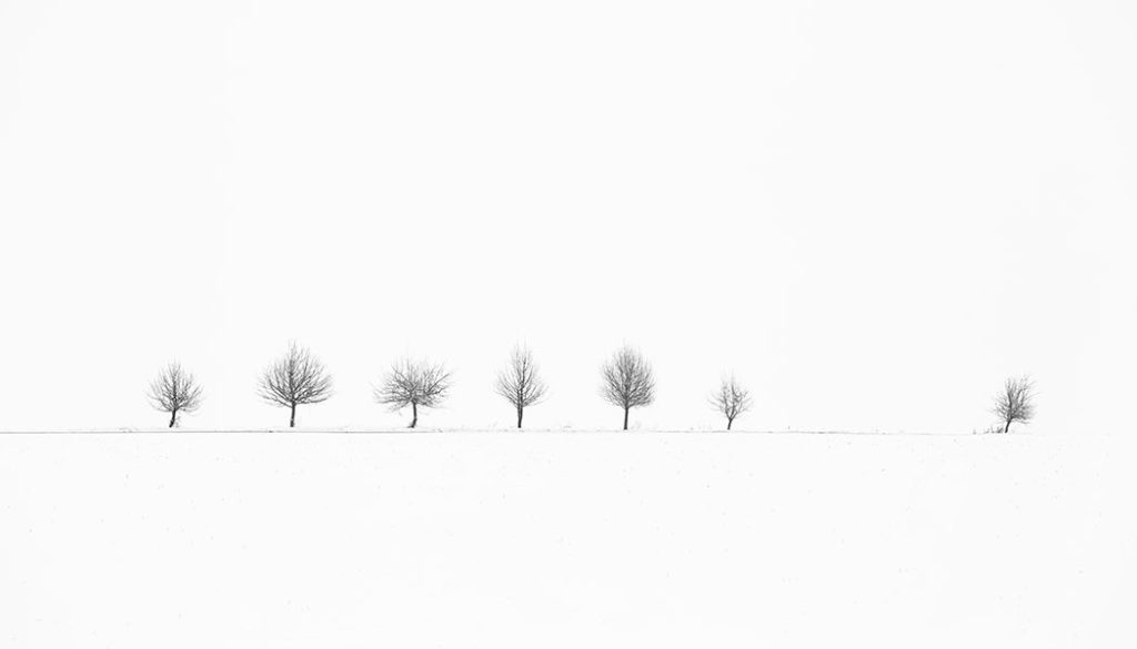 Get The Maximum With Minimalism Learn Photography By