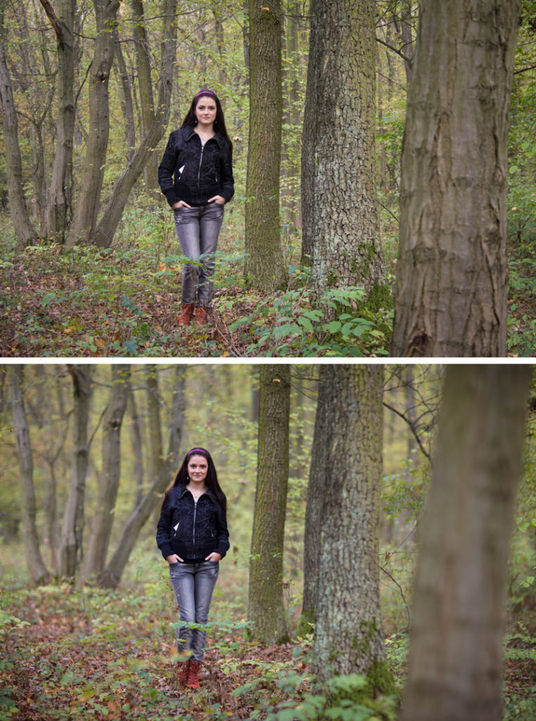 Comparing extremes. Top: Canon 350D (crop factor 1.6), Canon EF-S 18-55/3.5-5.6, 1/80 s, F5.6, ISO 400, focus 55 mm; Bottom: Canon 5D Mark III (Full frame), Canon 85/1.8, 1/200 s, F1.4, ISO 100, focus 85 mm