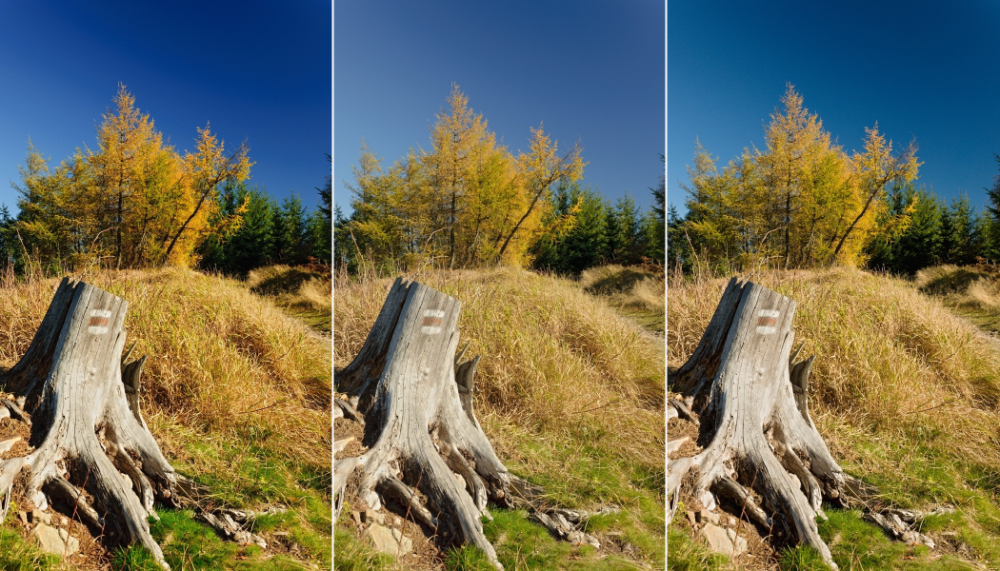 Fix Vignetting and Other Lens Defects: Learn to Use LCPs (and DCPs)