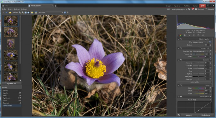 "When digitally editing photos, you can ""mine"" more out of them with a RAW digital negative than with just a JPEG. The RAW converter in Zoner Photo Studio offers all the tools you need for ""developing"" photos.It's not much more complicated than the Editor."