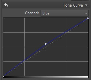 Adjusting color channels in Curves to shift the background towards cooler tones.