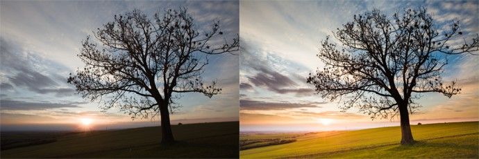A tree photo, out-of-camera and after edits. Canon 5D Mark II, Canon EF 16–35/2.8 II, 1/100 s, f/9, ISO 100, focus 16 mm
