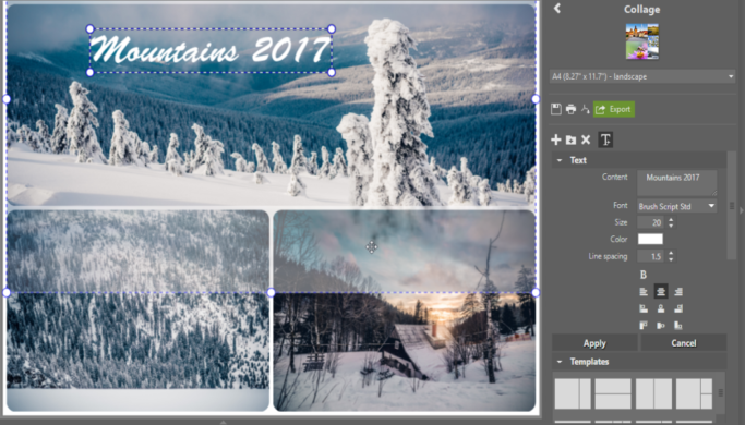 How to Print Multiple Photos on One Page: Creating Your Own Photo Collage