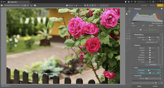 Lowering Saturation eliminates red-channel blowout. This reduces the picture's overall saturation.