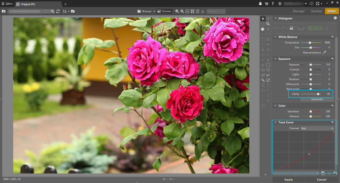 To restore detail in the roses, select them, raise Clarity, and lower Saturation in the red channel.