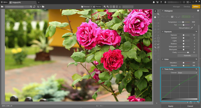 By emphasizing the green channel, you add detail to the red roses.