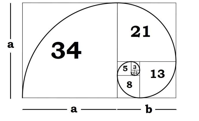The golden ratio is expressed in mathematics and in nature.