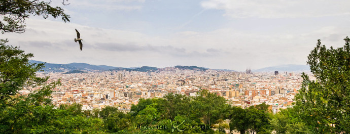 A panorama of Barcelona from the peak named Montjuic, stitched together from three shots. The seagull was flying nearby, and so before the shot, I waited for it to fit well into the photo's composition.