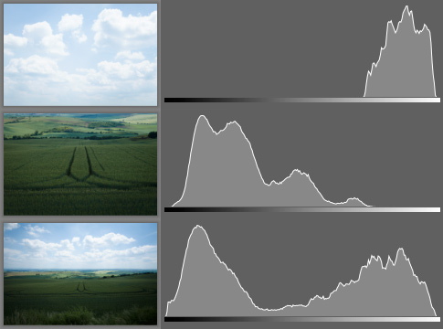 Three histograms corresponding to the individual photos on the left.