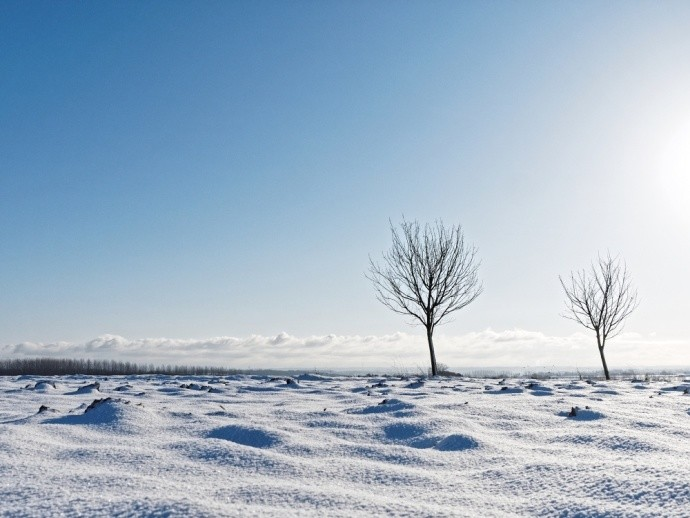 A pleasant picture in both composition and technique. Ideal for a winter-month calendar. Photo: by Jcgraas