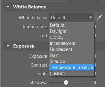 Zoner Photo Studio's Develop section also lets you set white balance using the same standard presets as are used in cameras.
