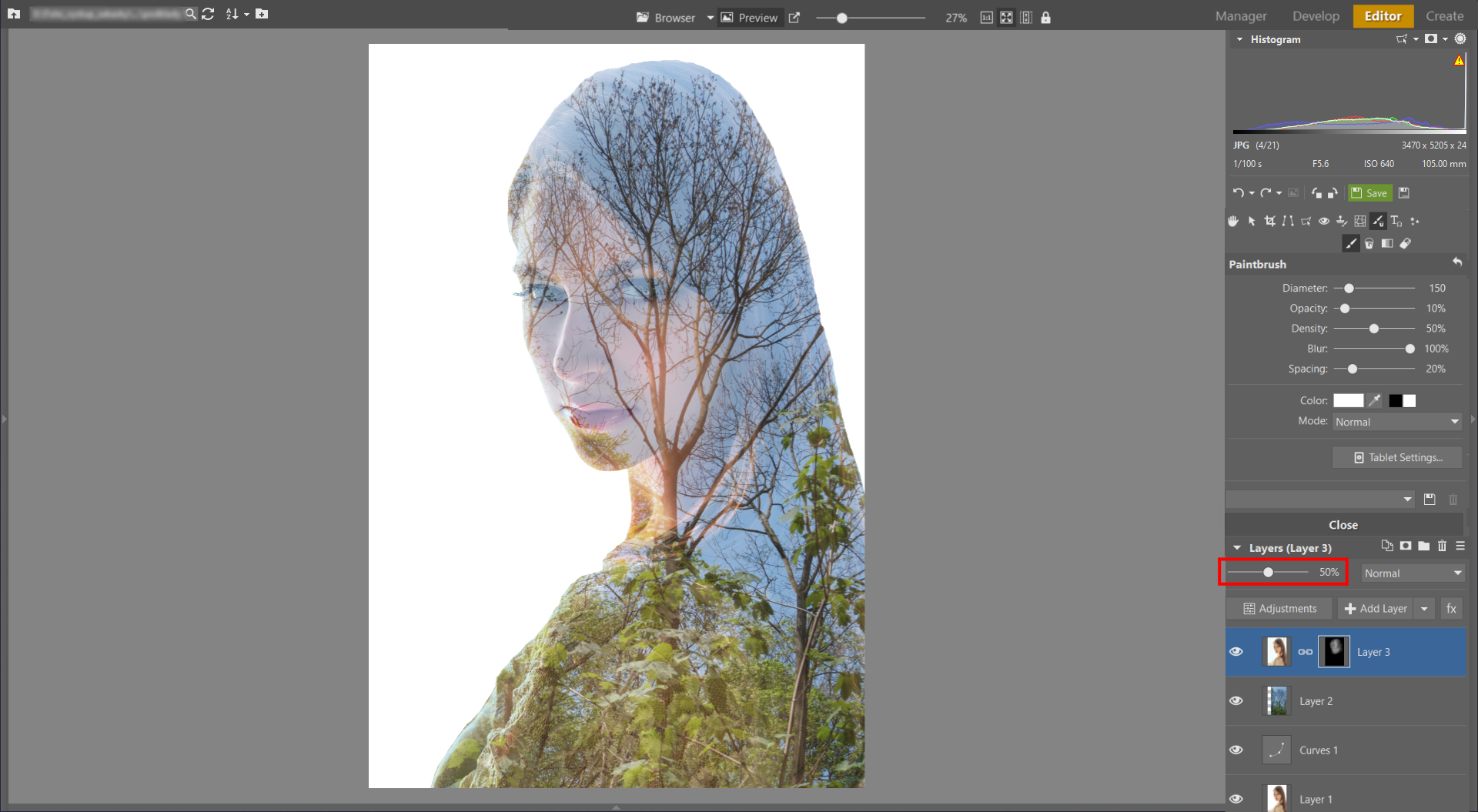 Learn to Create a Double Exposure Effect in ZPS - reducing opacity