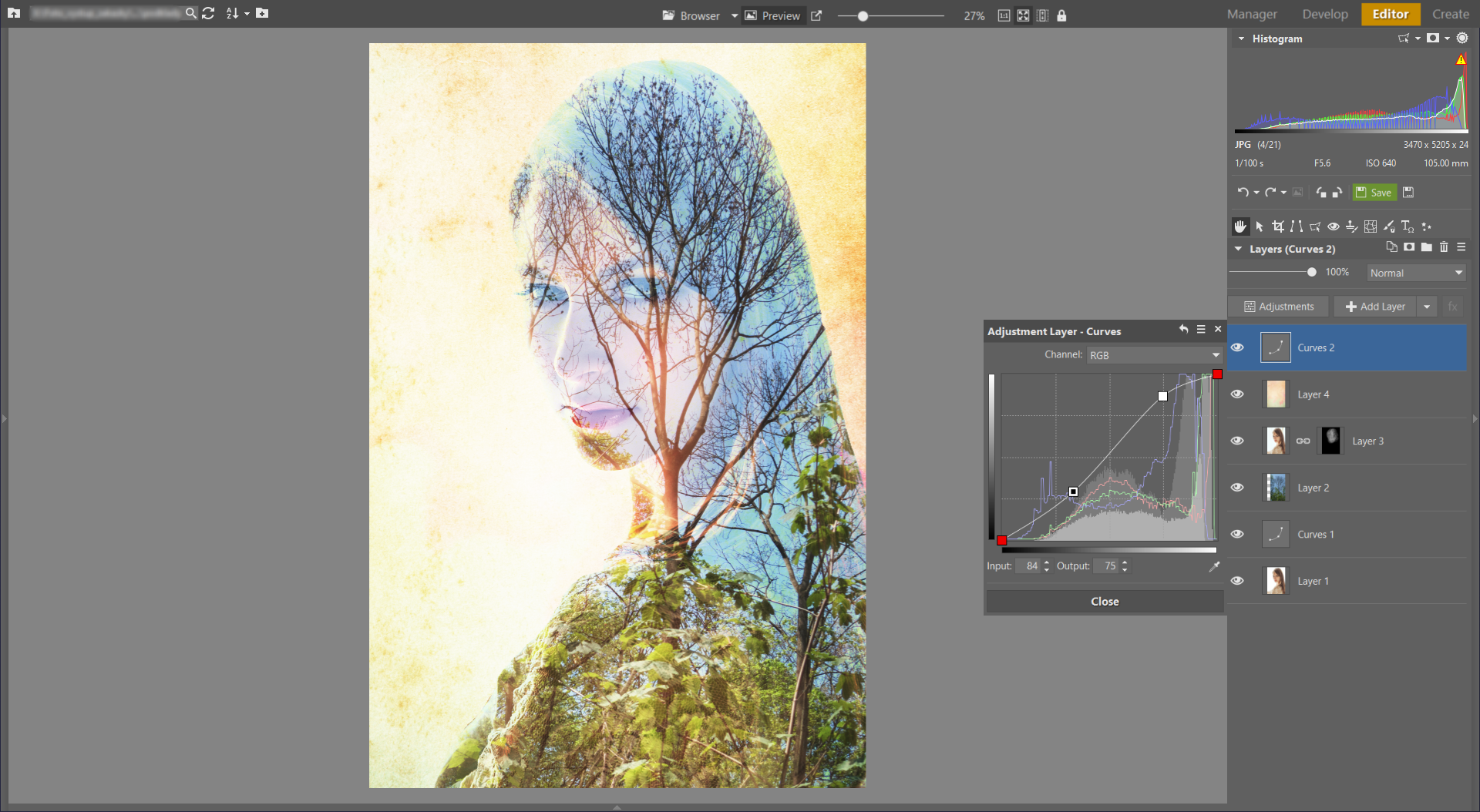 Learn to Create a Double Exposure Effect in ZPS - more curves