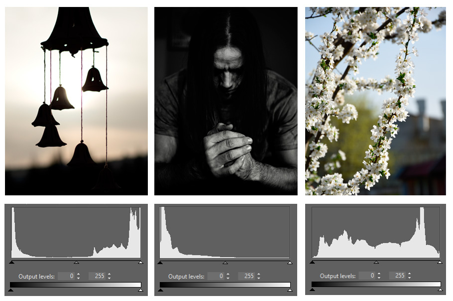There's no such thing as The Ideal Histogram. It all depends on a photo's type and its ratio of dark and light tones.