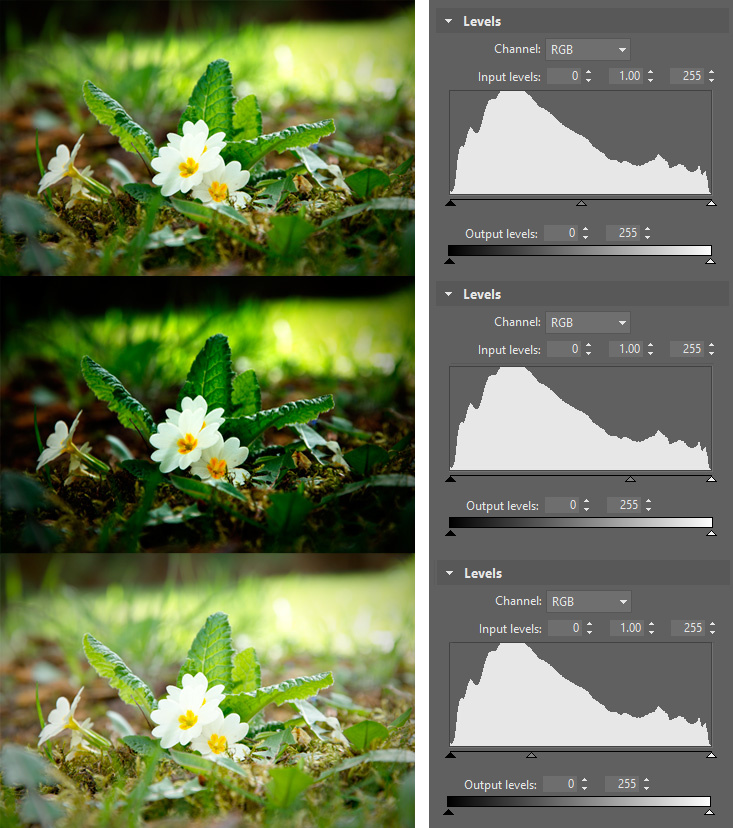 Nikon D5500, Nikkor 18-105/3.5-5.6G Ed Vr, 1/60 s, f/9.0, ISO 100, focal length 105 mm The midtones slider helps you fix a photo's overall brightness without changing its black and white points.