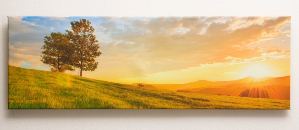 You can have your canvas prints produced in any of three formats. Both portrait and landscape orientation are available. Their prices start from $26.99.