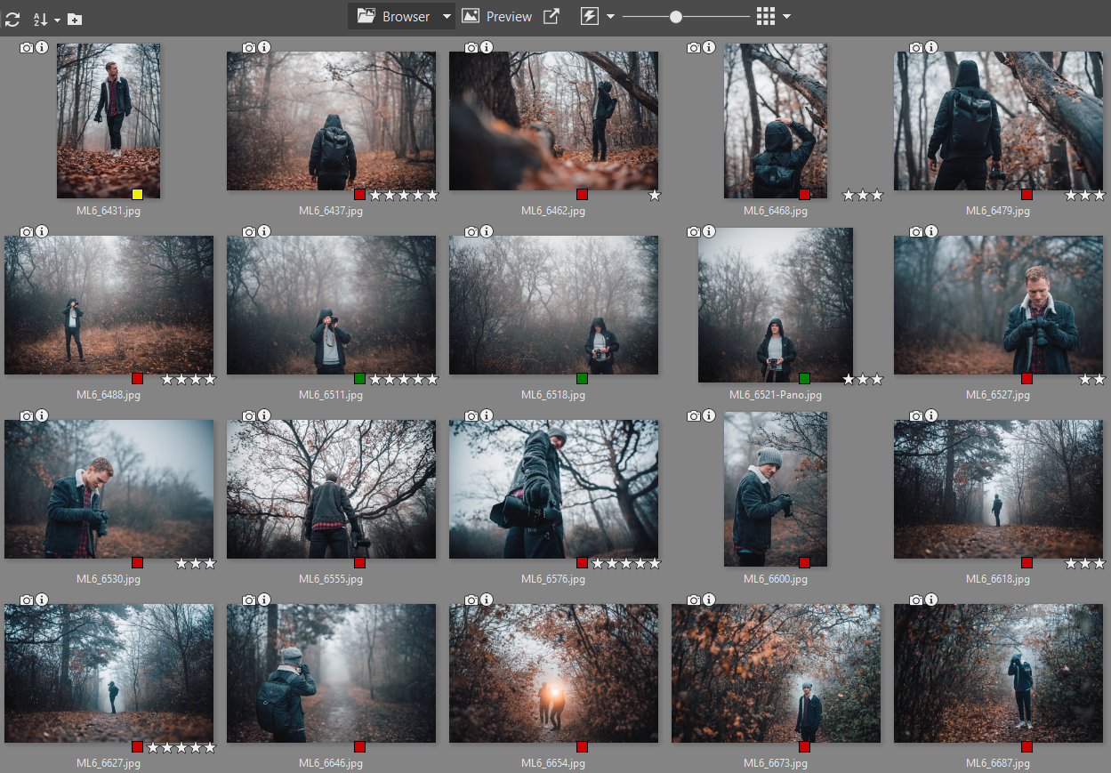 Spring Cleaning for Your Photography Folder: Organize Your Photos Using Labels and Ratings