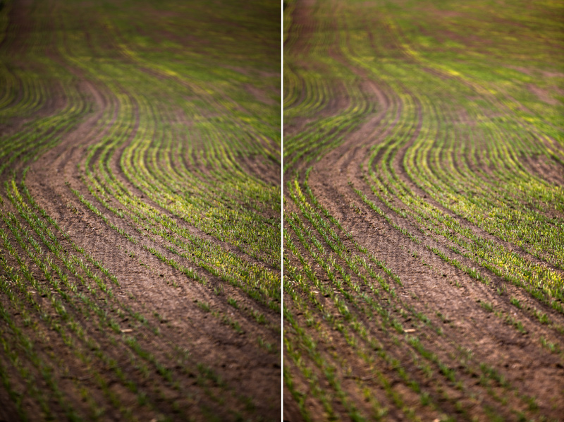 Left: the original photo with strong vignetting. Right: after editing.