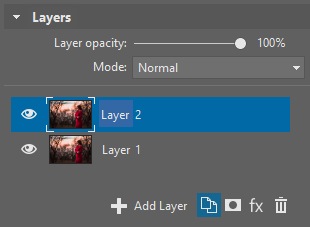 I've duplicated the layer using the button highlighted at the bottom. The new layer is selected automatically, and so your next edits will affect it.
