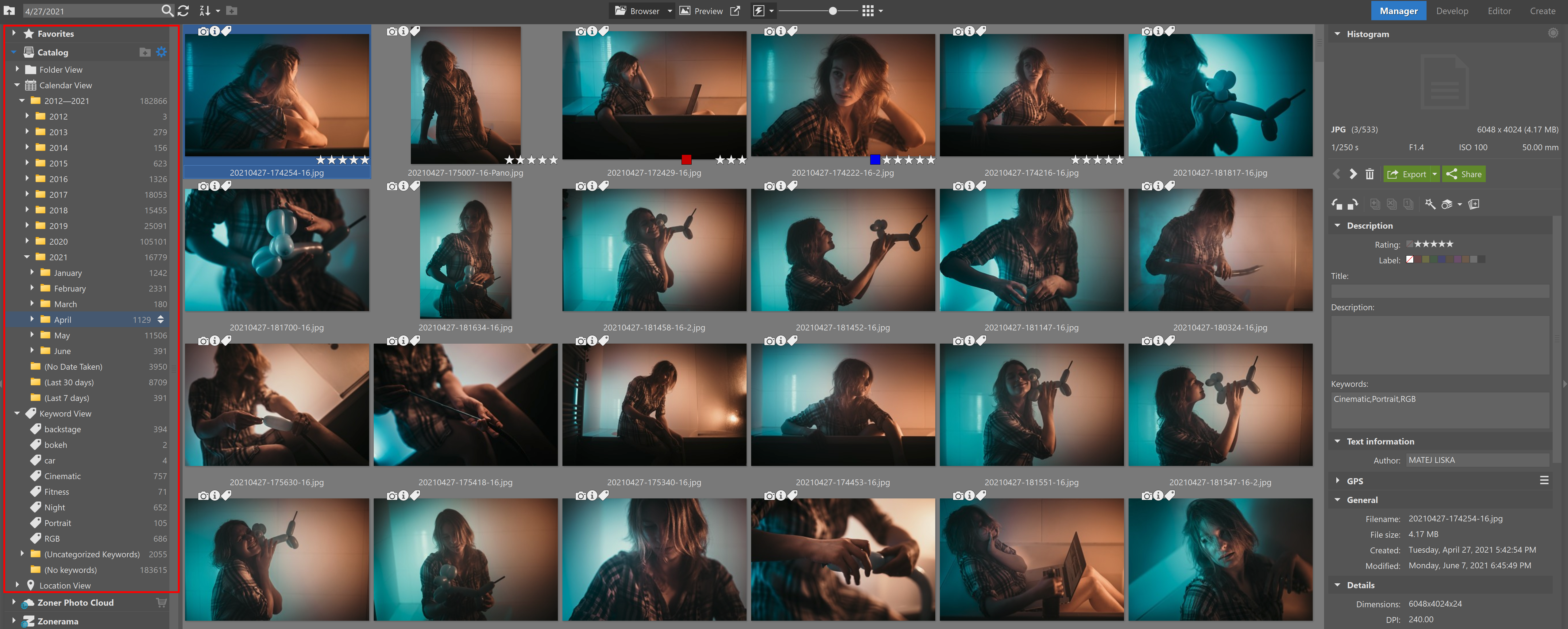 Using the Catalog in Zoner Photo Studio X