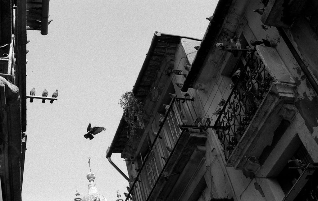 In this spot the houses were heavy with pigeons, and so it was just a matter of time before at least some of them would take flight. In the end I managed to catch the right moment. Olympus OM-1, F.Zuiko Auto-S 50 mm f/1.8, Ilford PAN 400