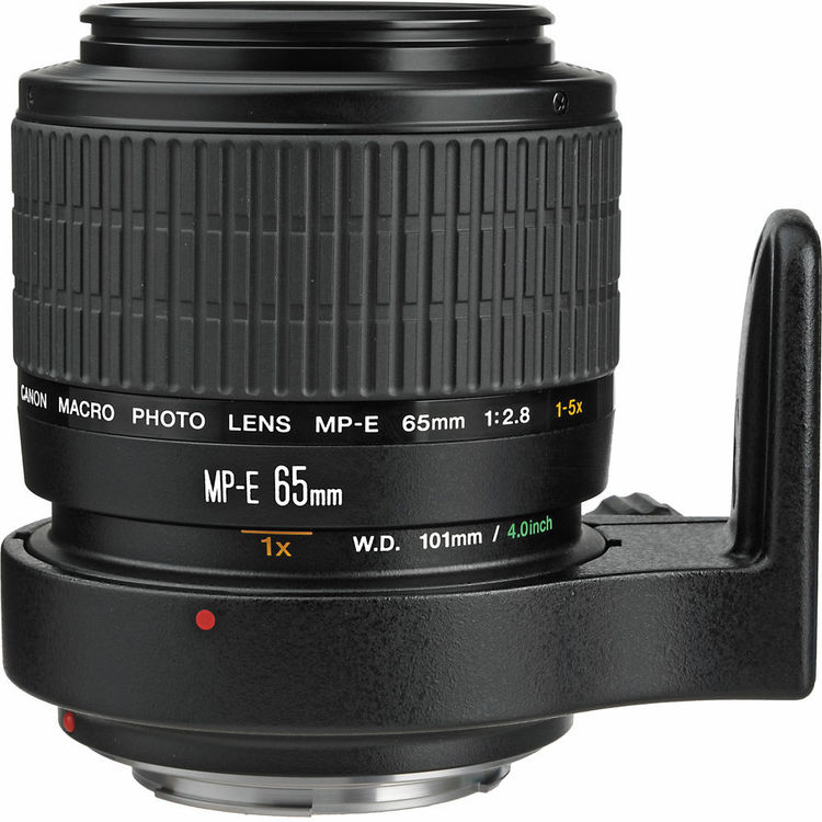 A Canon MP-E 65 mm f/2.8 lens with a magnification level of up to 5:1. Photo: bhphotovideo.com