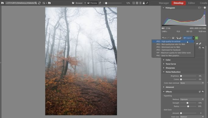 Your Step-By-Step Guide to Photographing and Editing Foggy Landscapes: photo export.