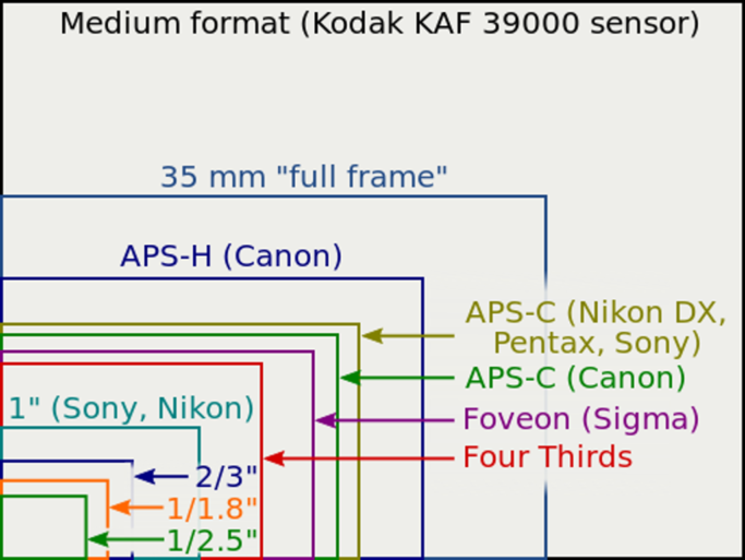 Learn the Language of Crop Factors: A comparison of various sensor sizes.