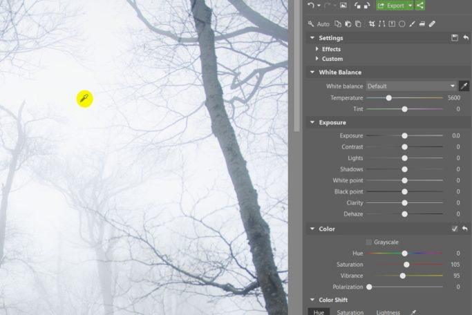 Your Step-By-Step Guide to Photographing and Editing Foggy Landscapes: white balance.