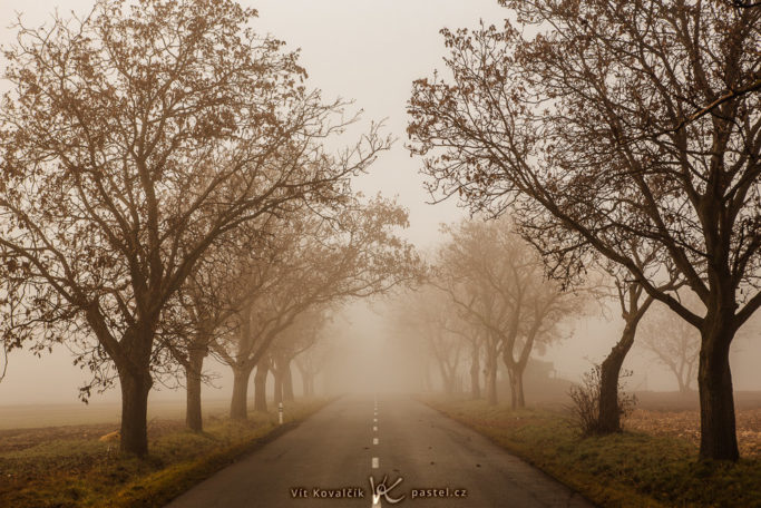 How to Photograph Fog: a road in a fog.