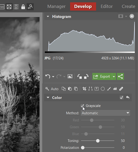 How to create black and white photos: Grayscale option in the Develop module in Zoner Photo Studio.