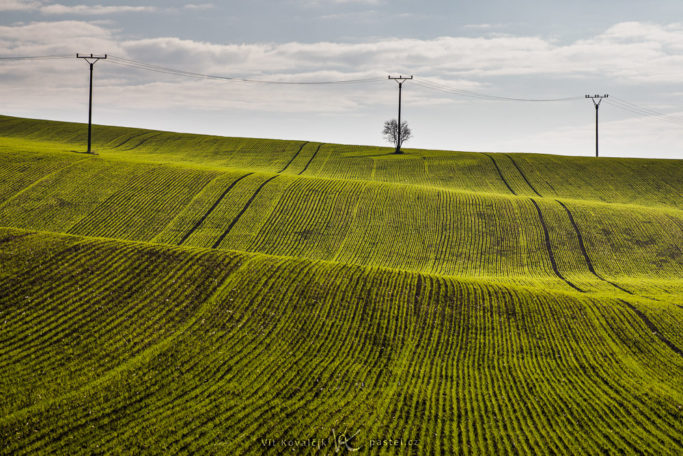 Benefits of Telephoto Lenses for Landscapes: poles above fields as a part of the composition.