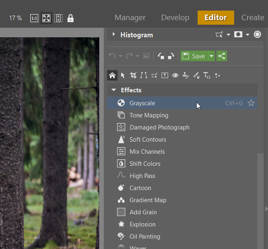 How to create black and white photos: Grayscale in the Editor module in Zoner Photo Studio.