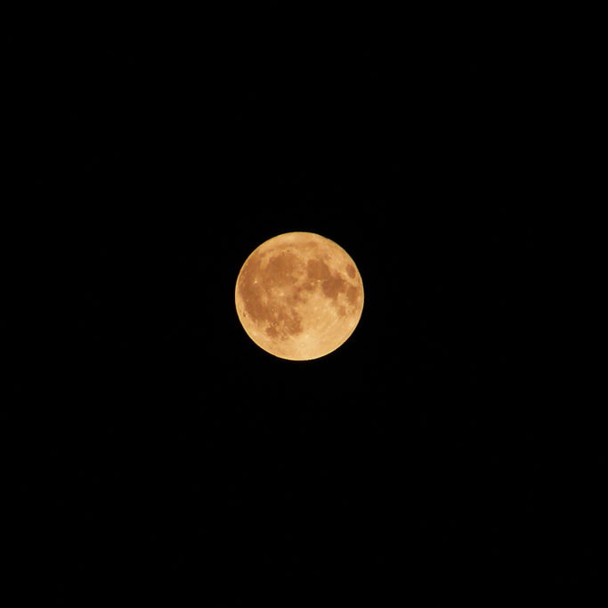 How to Photograph the Moon: a warmly colored moon.