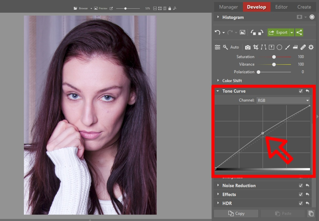 Learn to Edit Portraits and Discover the 5 Most Common Portrait Photo Problems- tone curve