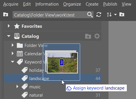 Sort your pictures easily with keywords: dragging pictures to a keyword.