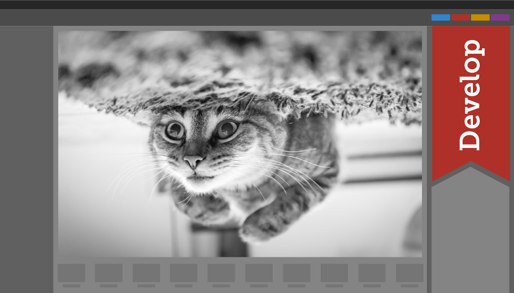 [Infographic] How to Convert a Picture to Black and White
