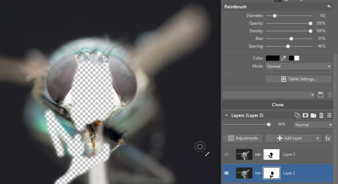 Focus Stacking: a picture during masking.