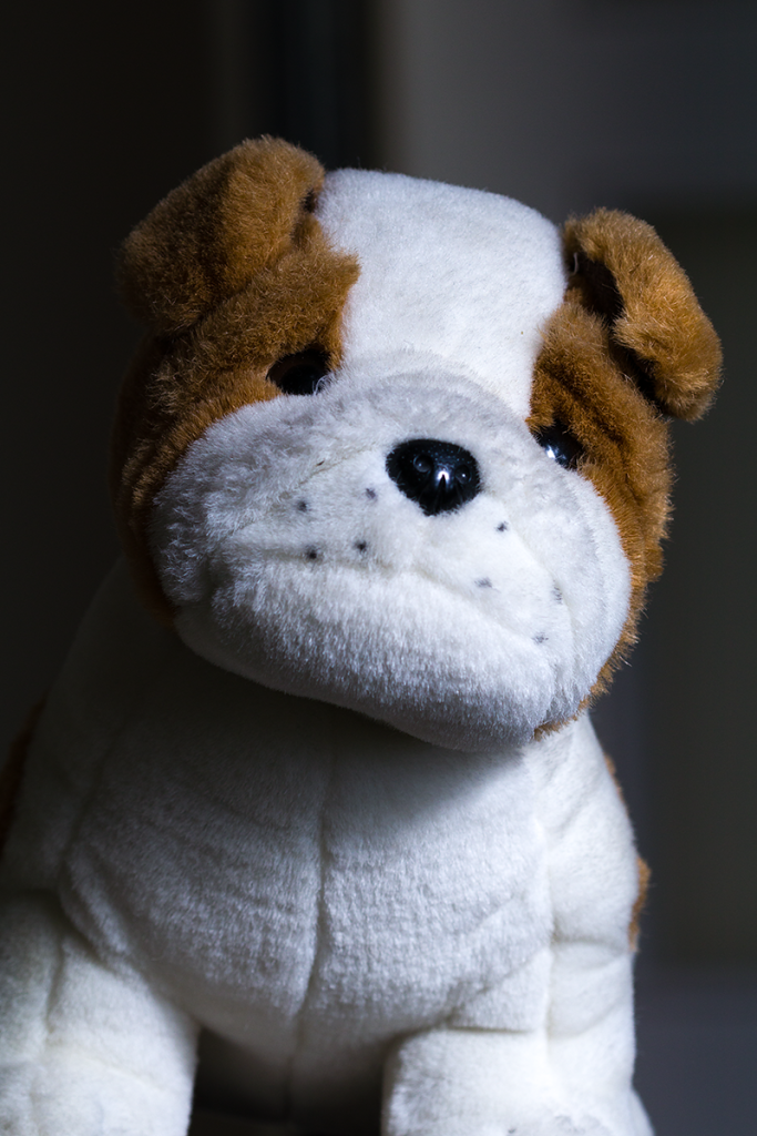 Photographing portraits in a combined light: a stuffed animal lighted by a flash.