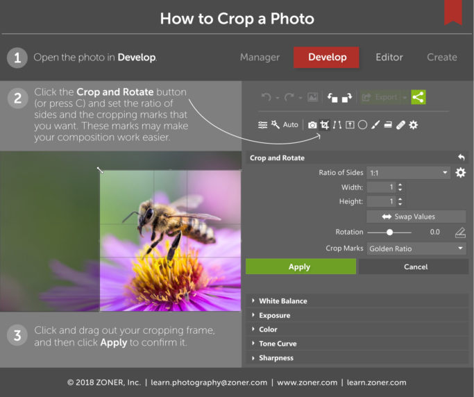 how to crop photos - infographic