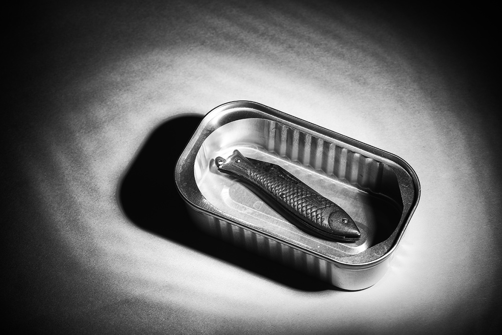 How to Photograph Still Lifes - fish