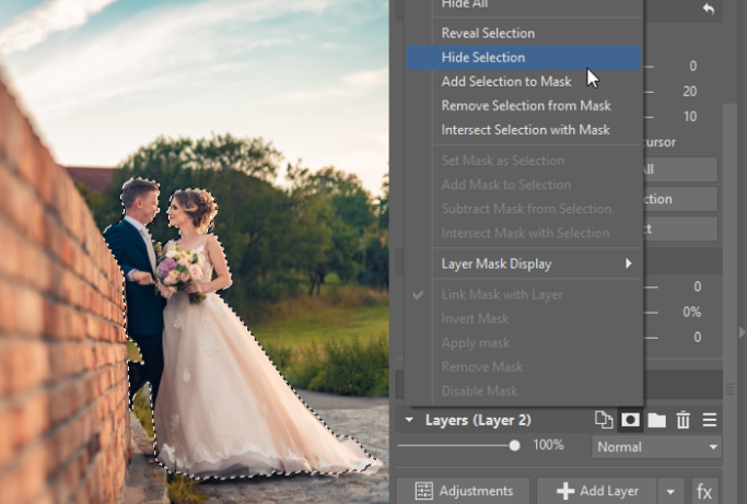 3 Tips for Suppressing Photos' Backgrounds: Hide Selection mask.