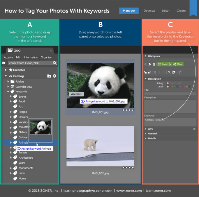 how to tag your photos with keywords - infographic.