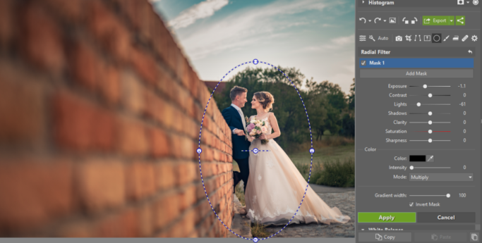 3 Tips for Suppressing Photos' Backgrounds: Radial Filter.