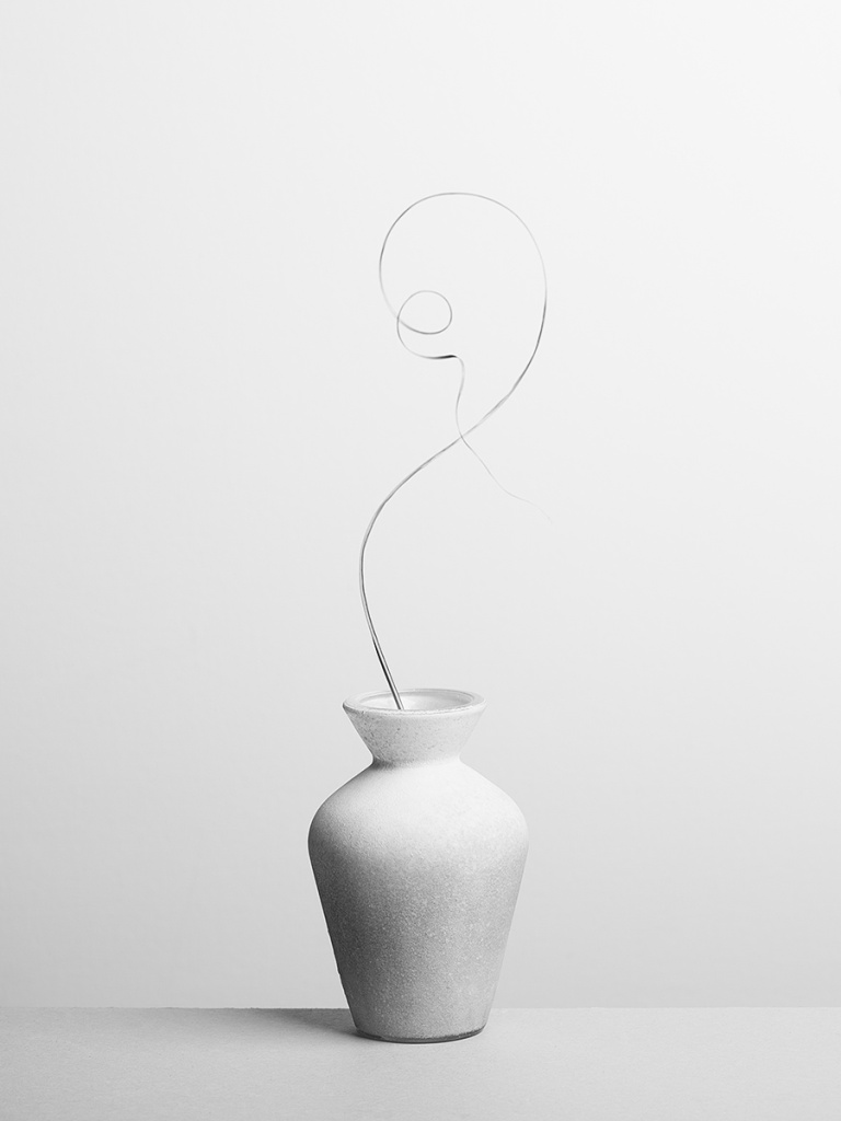 How to Photograph Still Lifes - vase with grass